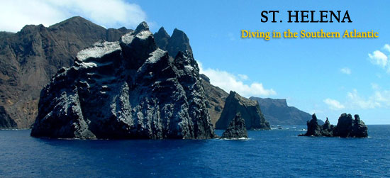 Diving Expedition to St. Helena in the South Atlantic