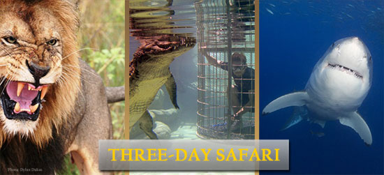 Three Day Safari near Cape Town South Africa